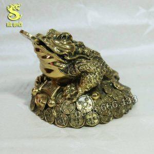 Cóc ngậm tiền bằng đồng vàng phủ bóng